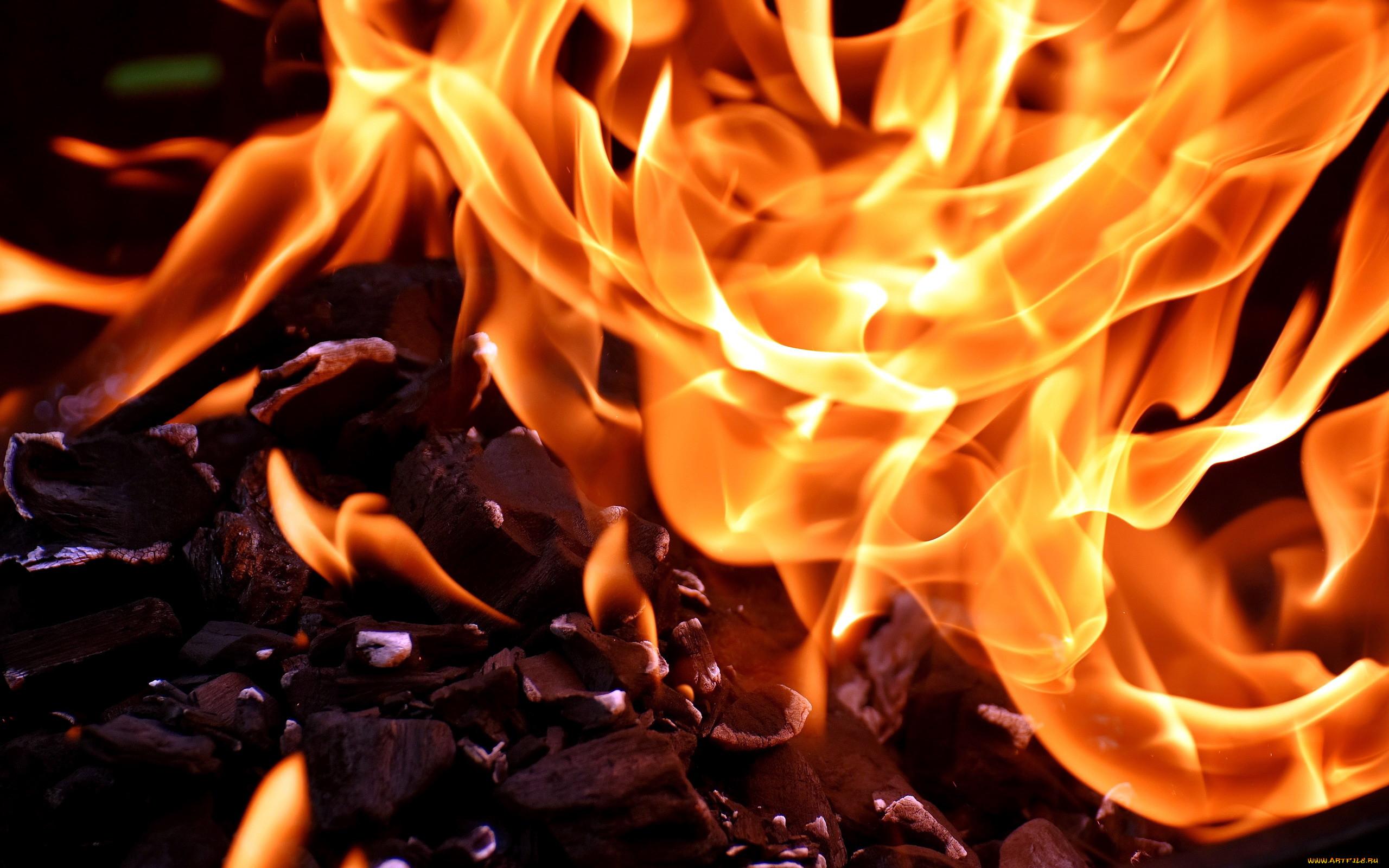 существа картинки обои огонь плитку кухне коридоре